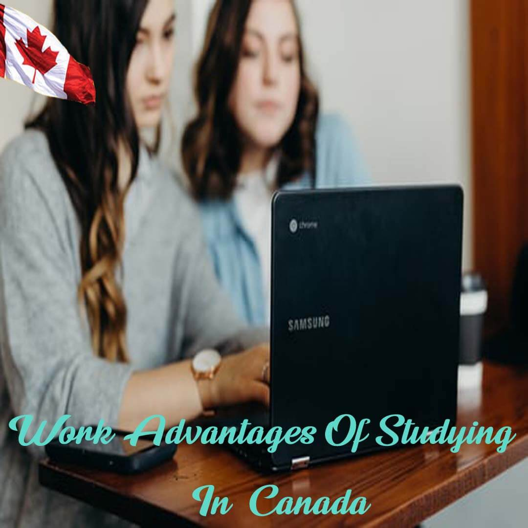 CIES | Canada Education & Immigration Consultants | Best IELTS Coaching In Noida