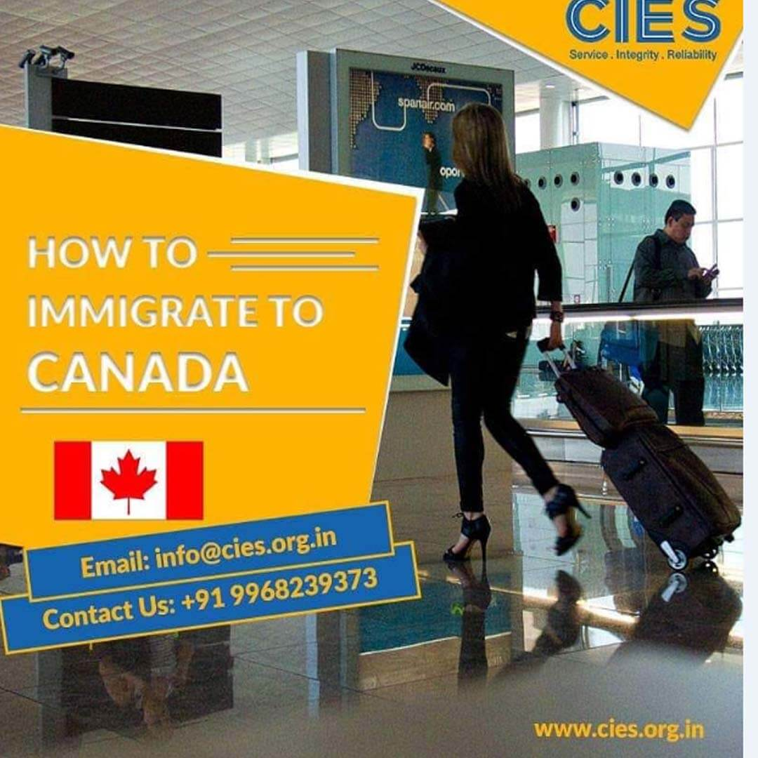 Canada Immigration & Education Consultants | Best IELTS Coaching In Noiada