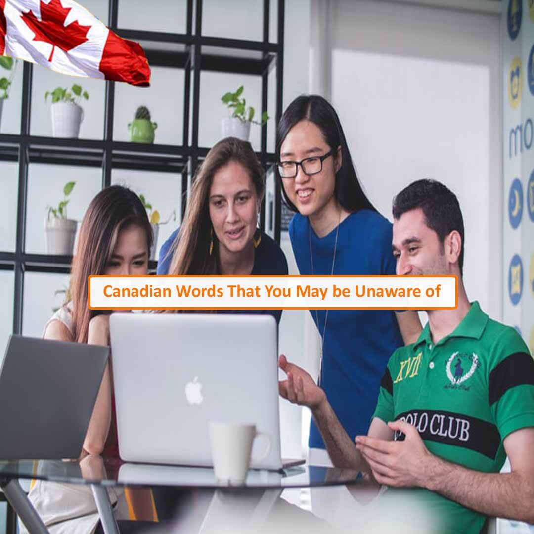 CIES | Best IELTS Coaching in Noida | Canada Education & Immigration Consultants